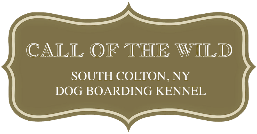 Call Of The Wild Dog Boarding Kennel In South Colton New York